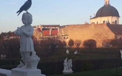 """ВЕНА 12-19.07.2021 """"ART Wiena 2021""""– выставки и музеи Вены."""